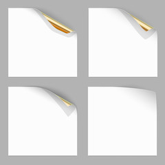 Gold Curled Corner of Paper Sheets. Stock Vector Illustration