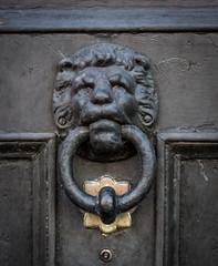 close up of lion head door knocker