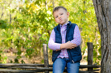 Handsome Little Boy Sitting on Wooden Fence