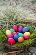 canvas print picture - Colored eggs in a basket