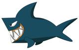 carton shark