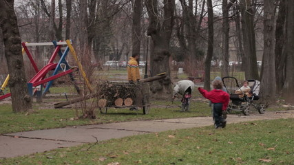 Poor family collected logs for heating in the park,poverty