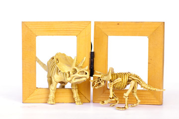 Dinosaur skeleton model on wood frame isolated on white - Stock