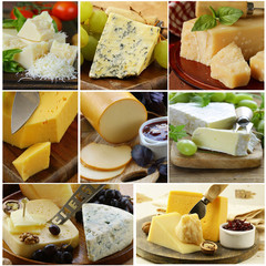 collage of cheese (brie, parmesan, cheddar, blue)