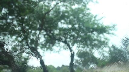 Rainy passenger