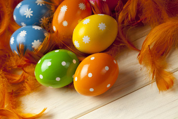 Easter eggs on feather background