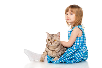 Little girl  with a British cat