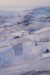 Vigneti delle langhe sotto la neve