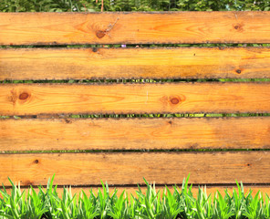 Summer grass and old wooden planks
