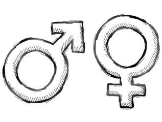 Hand drawn gender symbols. Sketch of man and woman signs