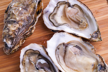Gourmet fresh french oysters