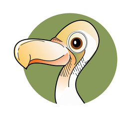 Bird dodo vector