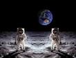Leinwanddruck Bild - Astronauts Moon Landing Earth
