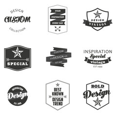 Retro Vintage Insignias or Logotypes set. Vector design elements