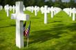 Cemetery - 78259185