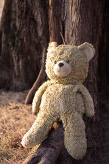 teddy bear sitting against a tree