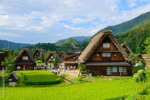 In de dag Japan Historic Village of Shirakawa-go in summer