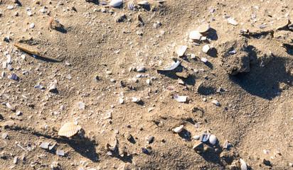 Spiaggia in inverno, texture