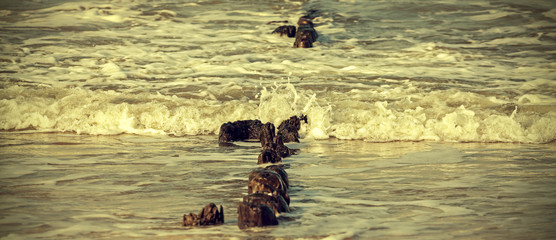Retro filtered picture of sea shore and old wooden posts.