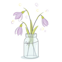 Spring flowers bouquet, snowdrops in jar