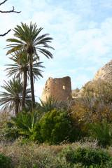 les ruines du château de San Pedro