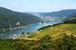 Leinwandbild Motiv Rhine valley in Rudesheim