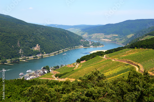 Fotobehang Heuvel Rhine valley in Rudesheim