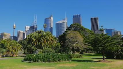 Sydney City Skyline, Royal Botanic Garden