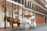 Fototapety Elegant horse-drawn carriage in French Quarter, New Orleans
