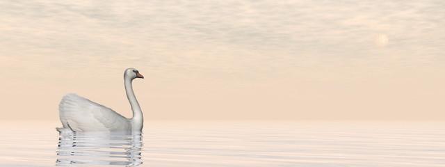 Peaceful swan - 3D render