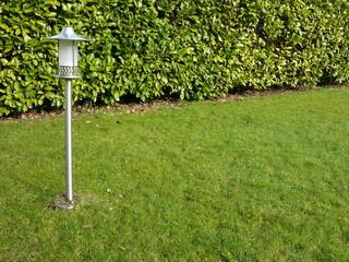 Grüner Rasen und Hecke mit Gartenbeleuchtung in Oerlinghausen