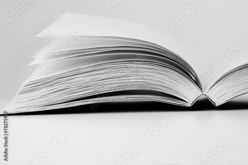 Blank book - 78275957