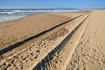 tyre tracks on the beach