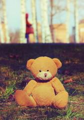 Teddy bear outdoor