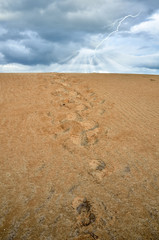 footprint over the sand