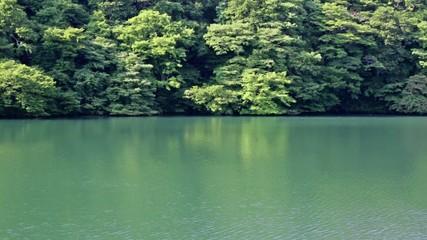 白神山地 十二湖