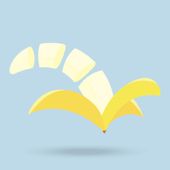 banana slices isolated on background