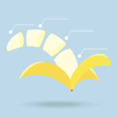 banana slices structure diagram isolated on background