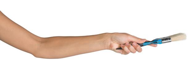 Female hand holding paint-brush