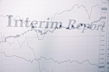 Inscription Interim report on pc screen