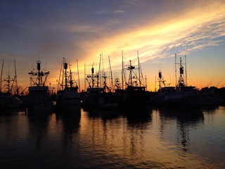 silhouetted boats at sunset in san diego