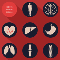 Medical icons, human bodies, flat design, vector