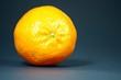 canvas print picture - Orange auf dunklem Hintergrund