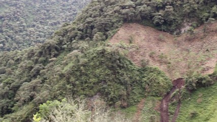 Landslide caused by cutting montane rainforest