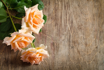 Delicate cream roses from the site  on wooden table