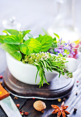 herb and aroma spice