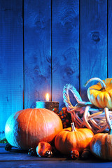 Halloweenkürbisse in blauem Licht
