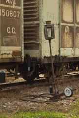 An abandoned switch choose railway