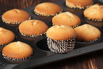 Plain Cupcakes In Baking Tray
