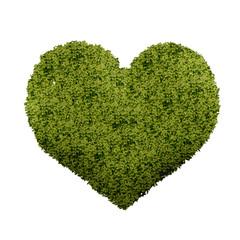 Groen hart - liefde voor de natuur